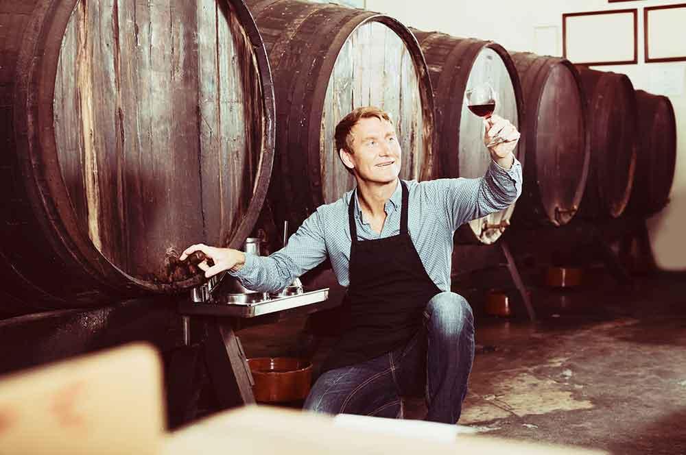 VINÁRI - Špičkové regionálne vína priamo z rúk profesionálov