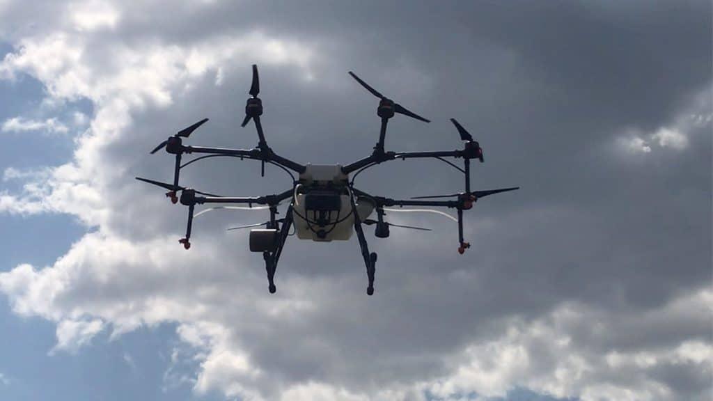 Dron vo vinohrade